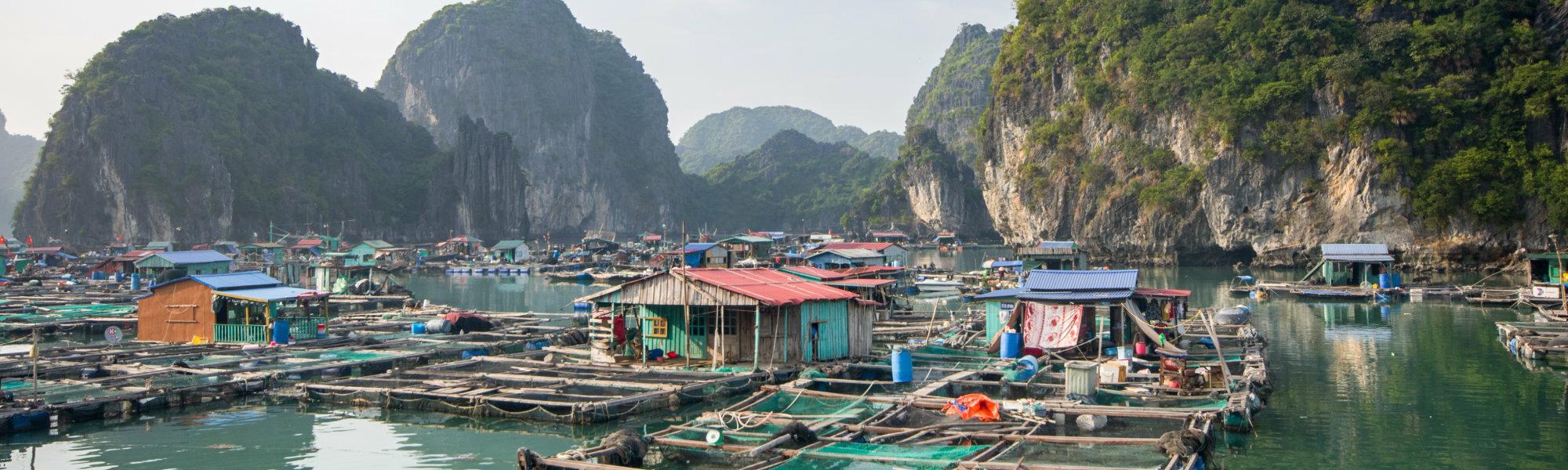 regarder datant Vietnam en ligne