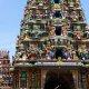 Carnet de voyage : Sri Lanka
