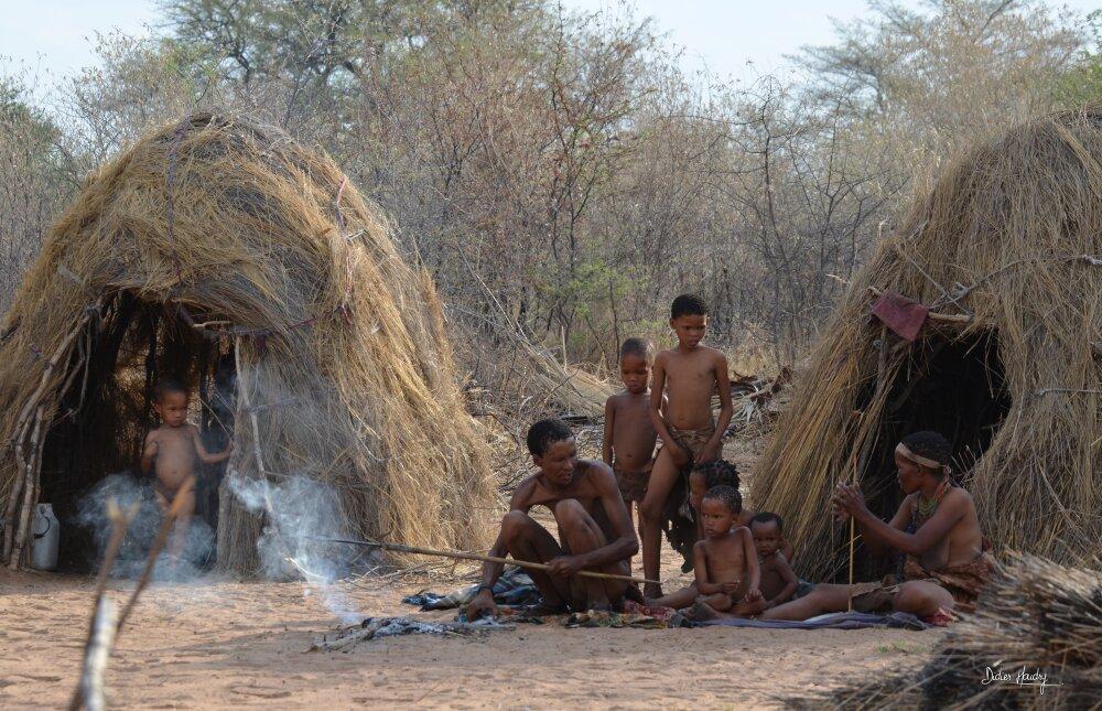 Chez les bushmen