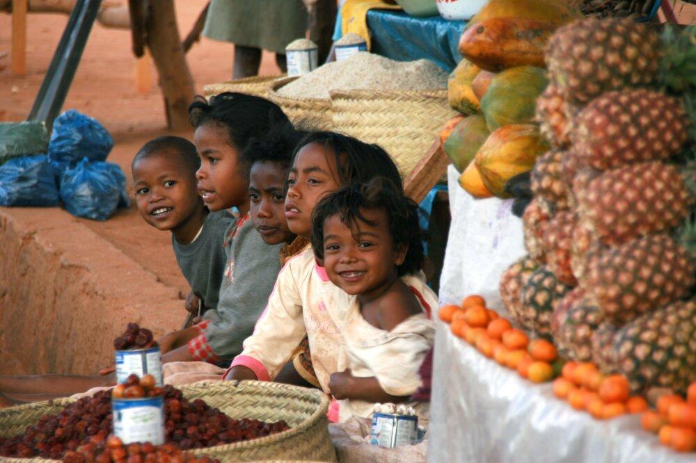 Apprentis vendeurs de fruits ....