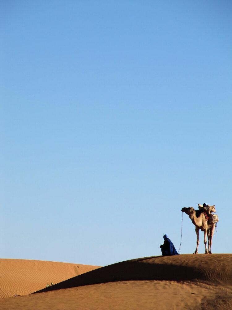 vaisseau du désert