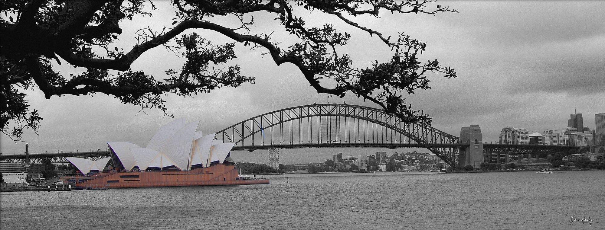 L'Opéra et la baie de Sydney