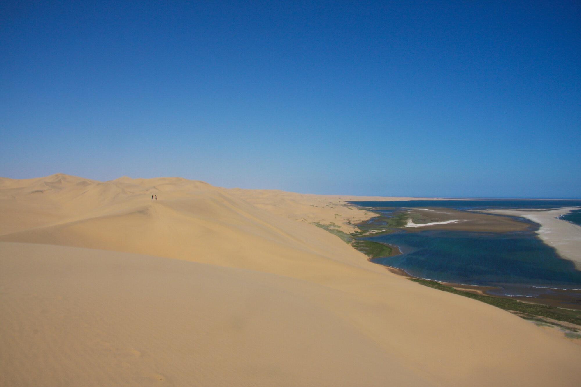 Entre désert et océan à Sandwhich Harbour
