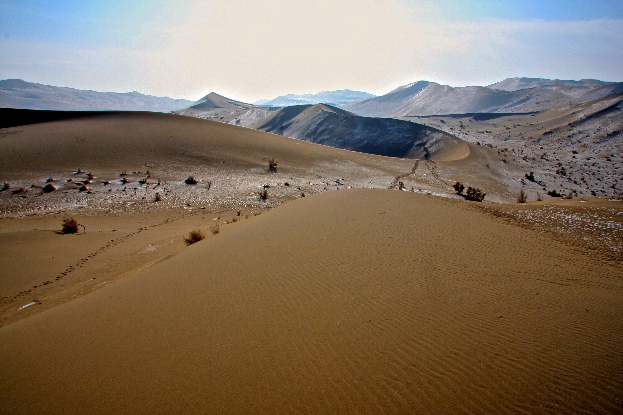 Dans le désert de Gobi