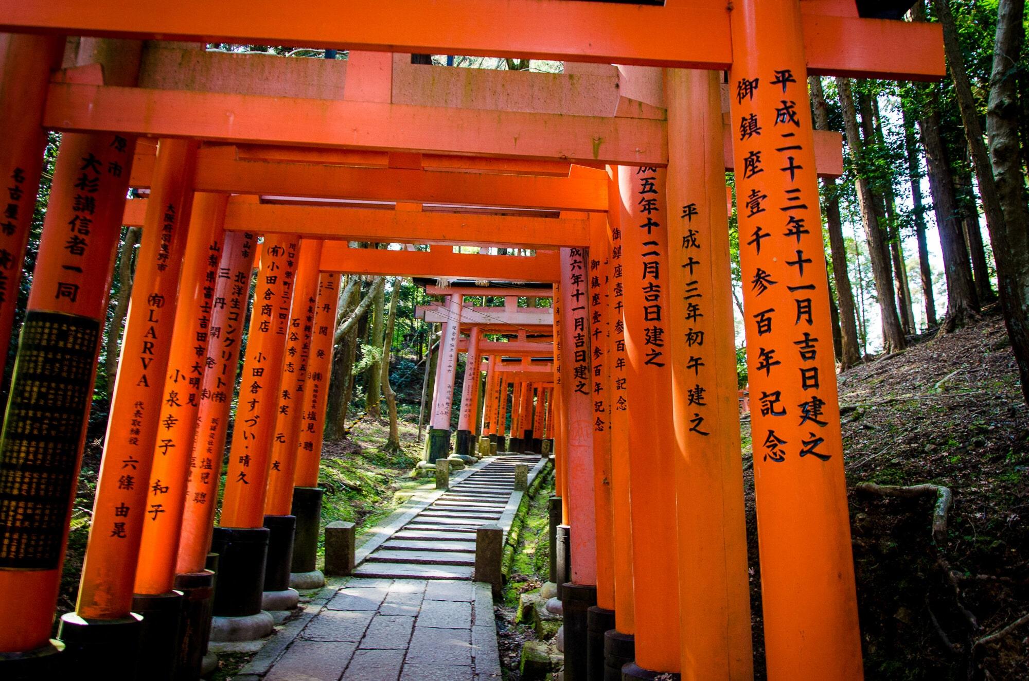Torii du Fushimi Inari-taisha