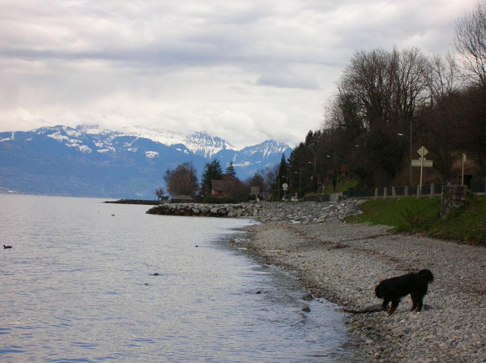 Uksa découvre le lac