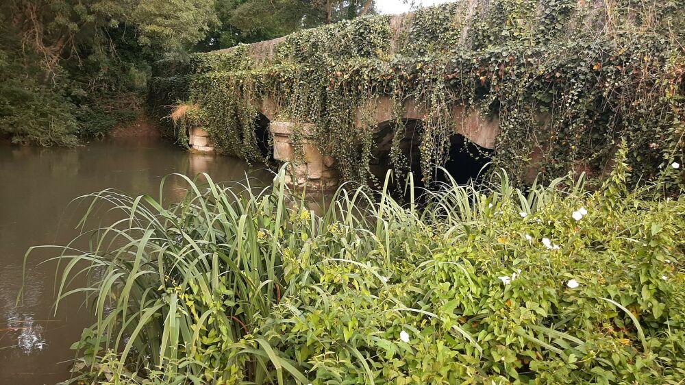 Pont sur la Seugne