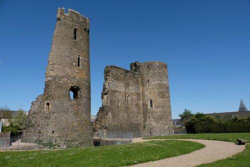Ferns - Castle