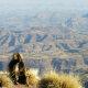 Carnet de voyage : Au sommet de l'Ethiopie