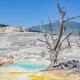 Carnet de voyage : 4 jours à Yellowstone