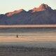 Carnet de voyage : Solitudes namibiennes