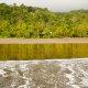 Carnet de voyage : El Chocó entre forêt dense et vagues du Pacifique